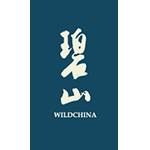 碧山logo-Flow Asia
