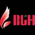BGH网站的logo-Flow Asia