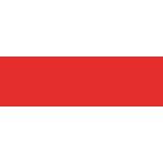 CMM-i网站的logo-Flow Asia