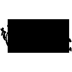 爱外投网站的logo-Flow Asia