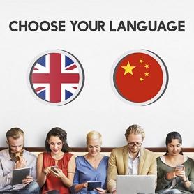双语网站建设- Flow Asia