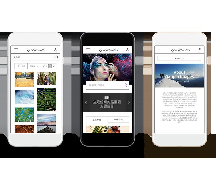 高品图像的网页设计与网站建设04-Flow Asia