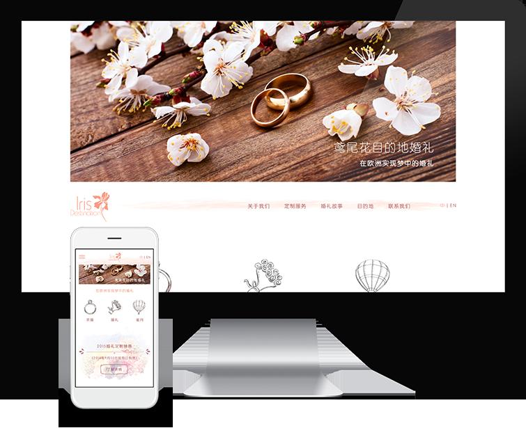 鸢尾花目的地的网页设计与网站建设-Flow Asia
