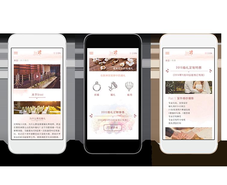 鸢尾花目的地的手机网站建设-Flow Asia