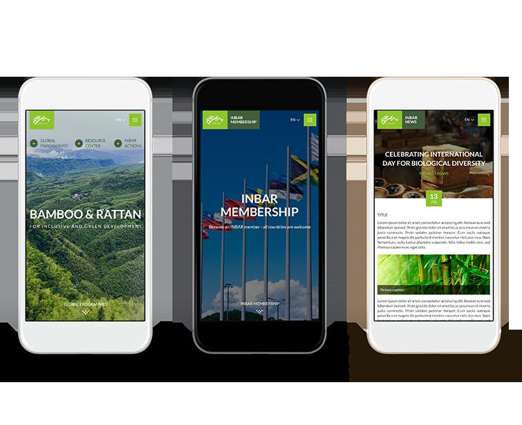 Inbar手机网站建设-Flow Asia