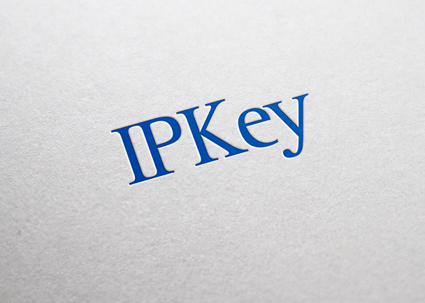 IP Key的VI 设计-Flow Asia