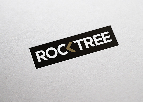 石树资本VI设计-Flow Asia
